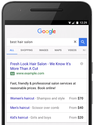 Google Example of Price Extension