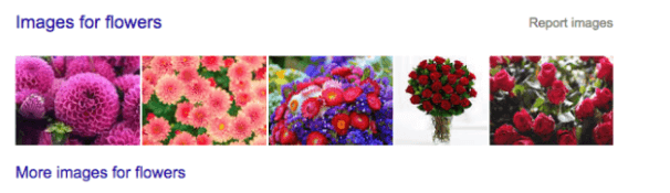 image results for flowers in Google