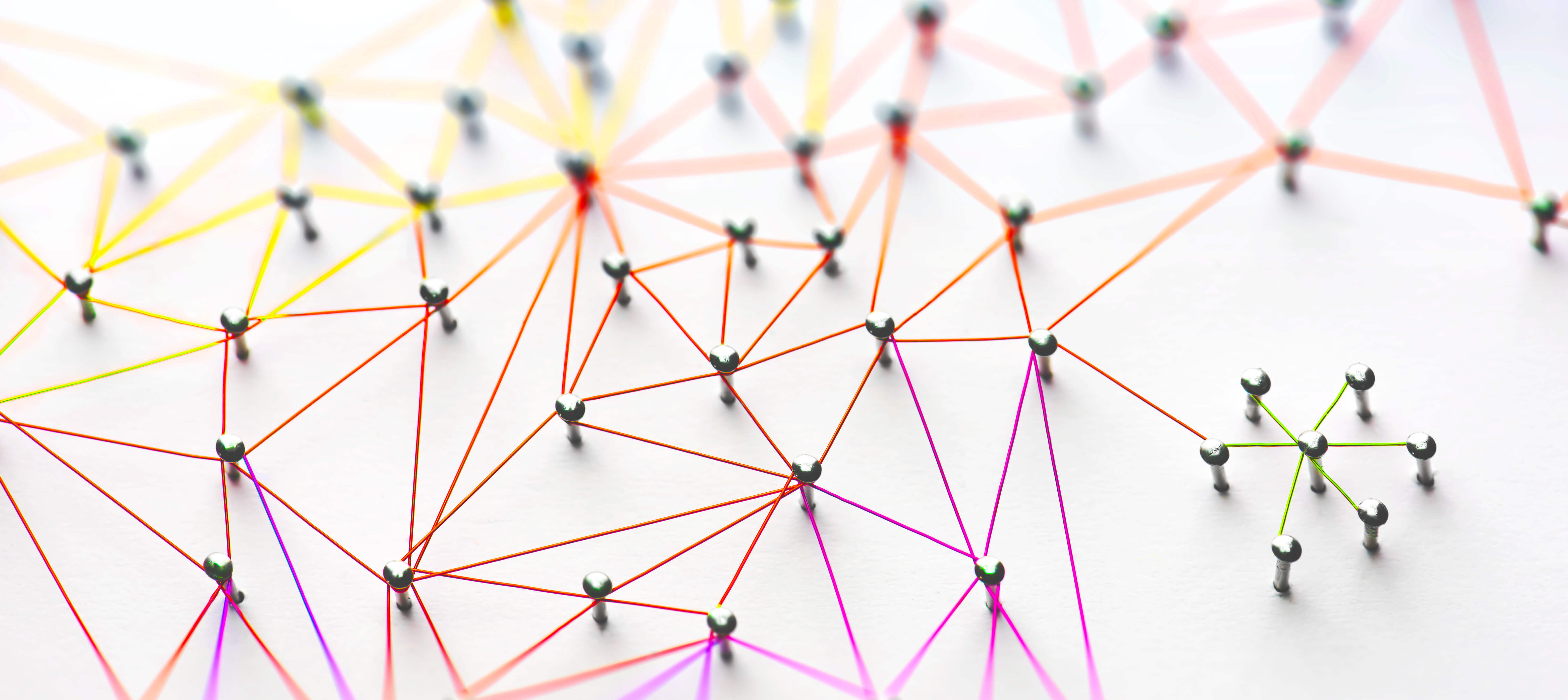 interconnected web