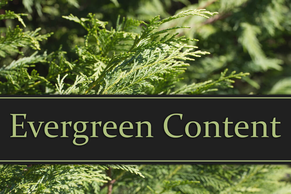 Evergreen content text on conifer tree backdrop