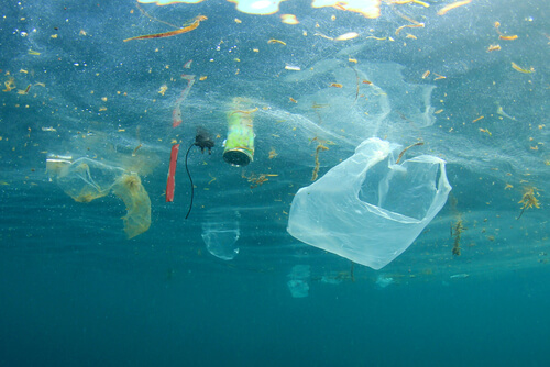 Plastic in the ocean, a cause that OceanHero works on