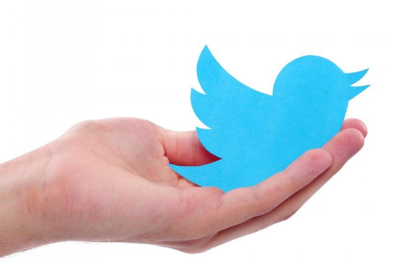 Twitter bird in hands